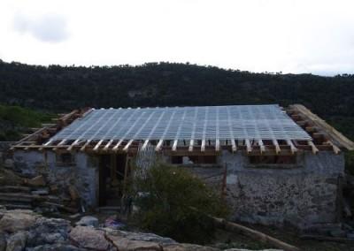 Sarpanta acoperis 1